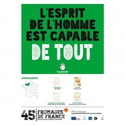 L'affiche Fromages AOP Normandie